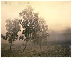 Misty Capture