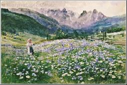An Alpine Meadow