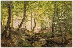 A Forest Glade, Springtime
