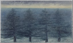 Pines, Black Sea