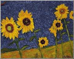 Sunflowers in Tuscany II